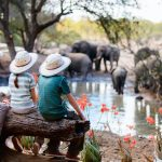 Sådan bliver du klar til din næste safari